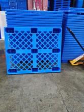 东莞塑料卡板,东莞塑胶卡板,东莞胶卡板,东莞塑料托盘,东莞塑胶托盘图片