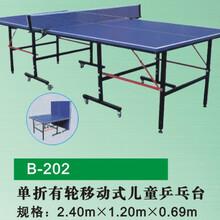 厂家直销乒乓球台深圳乒乓球台厂家