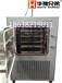 压盖冻干机/LGJ-100F压盖冻干机