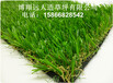 青海建一个五人制人造草坪足球场地多钱?