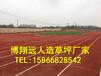 浙江杭州卖人工草皮现货供应