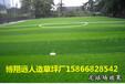 门球比赛场地修建成本造价多钱一平方米