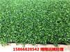 建德PECPG-10門球場人工草皮專用地毯