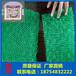 三维植被网厂家/山东土工网规格齐全、EM3层护坡网垫批发