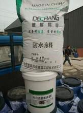 水工高性能涂料堤坝防渗表面专用涂料