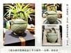 西安耀州瓷茶酒具工藝禮品,倒流壺、公道龍頭杯紀念品