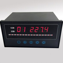 XSLC16巡检仪XSLC16仪表图片