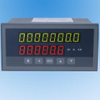 XSJDL/IA1BAS1M1V0定量控制仪