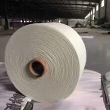 气流纺16支仿大化涤纶纱图片