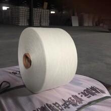 仿大化纯涤针织纱12支图片