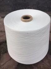 10支大化涤纶纱起绒用纱图片