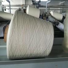 气流纺邢台市仿大化涤纶纱官网图片