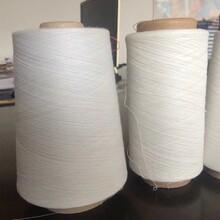 生产厂家仿大化涤纶纱涤纶丝喷气织机专用纱图片