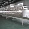 供应HMWB-32SD猫砂微波烘干设备宠物食品品膨化杀菌设备