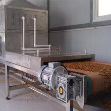 供应浩铭HMWB-50SD微波荞麦皮烘干杀虫设备图片
