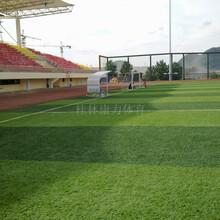 桂林标准五人制足球场人造草皮场地尺寸规格