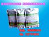 铜川潲水喂育肥母猪饲料发酵剂生产厂家在哪