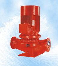 立式恒压切线消防泵图片