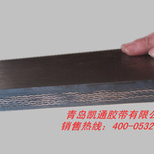 尼龙(NN)输送带青岛厂家生产销售青岛隆源通达图片