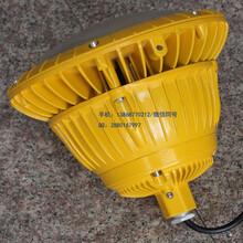 BAD85固态免维护防爆灯图片