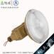 BZD130-40防爆LED照明燈