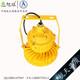 XQL8031免维护LED防爆灯 (2)