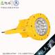 XQL8031免维护LED防爆灯 (5)