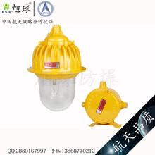 GCD616-XL50吊杆式LED防爆固态照明灯图片