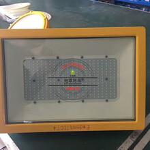 工矿灯具BLED9118,实验室防爆平台灯110W图片