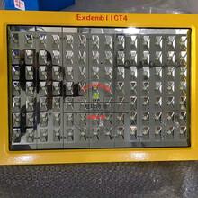 室外防雨100Wled防爆道路灯,LED节能灯图片