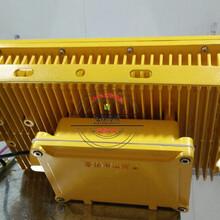 防爆马路灯ZL8921_干蒸房80WLED防爆灯图片