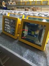 发电机室LED防爆灯40W,防爆灯SW8150图片