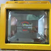 ZL8925油漆库LED防爆灯40W图片