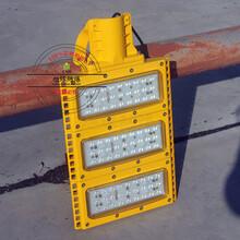 调式防爆道路灯100W图片