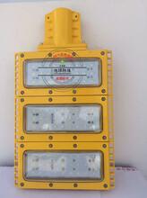 防爆模组灯,造船厂LED防爆灯100W图片