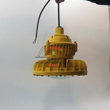 煤用防爆灯210W_CCD98-防爆道路灯图片
