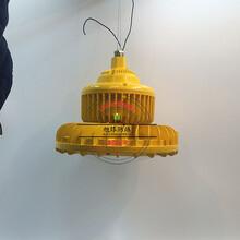 灶台LED平台灯180W_防爆道路灯图片