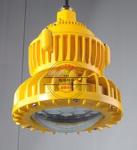 液化气站LED防爆灯60W,LED马路灯图片
