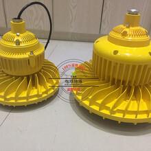 LED灯FGQ1233,调式防爆照明灯60W图片