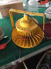 GB8040-防爆道路灯_厨房216WLED灯图片