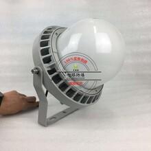 壁挂LED防爆灯70W,NFC9189-防爆油站灯图片