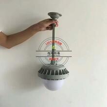 油厂防爆平台灯60W_XQL9822-防爆马路灯图片