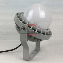 LED灯NFC9189_吊杆式LED防爆灯30W图片