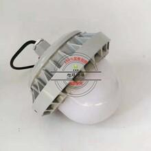 防震型LED防爆灯40W,防爆马路灯NFC9186图片