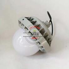 NFC9186-LED防爆灯50W,巷道防爆投光灯图片