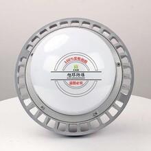 防爆应急灯NFC9189_工程100W防爆道路灯图片