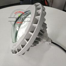 化工廠防爆彎桿路燈80W,防爆彎桿路燈GLD8520