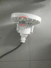 BAD84防爆路燈頭圖片