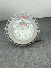 LED防爆路燈_管廊LED防爆路燈150W