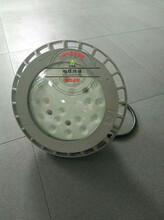 船廠100W防爆路燈燈具,防爆路燈燈具TCD6209圖片